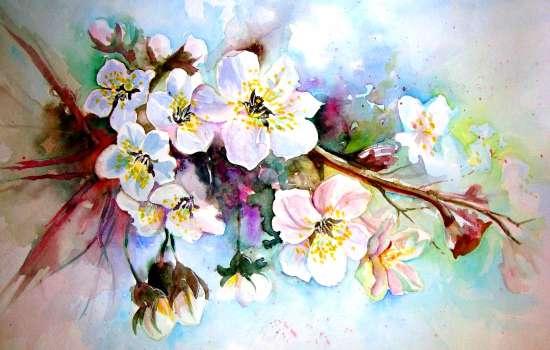 Картина по номерам 40x50 Нежные цветочки яблони